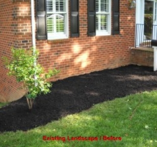 Existing Landscape / Before