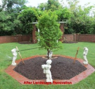 After Landscape Renovation