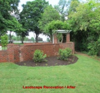 Landscape Renovation / After